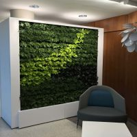 Green Living Wall Maintenance in PA
