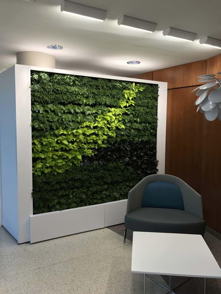 Green Living Walls Amp Plant Wall Maintenance Pennsylvania